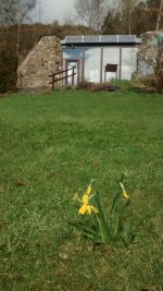 Earthship in Spring