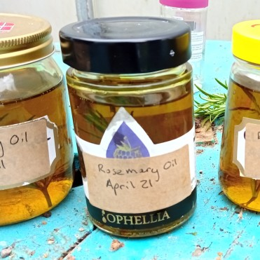 Rosemary Oil made by Dads group