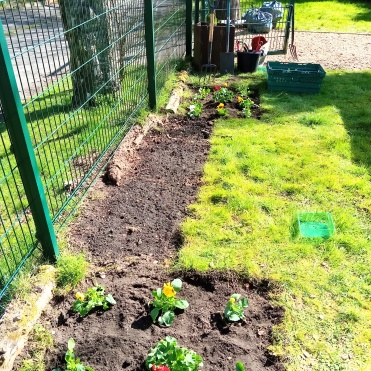 tidy garden ready for planting food